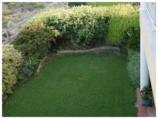 Repairs Lawns